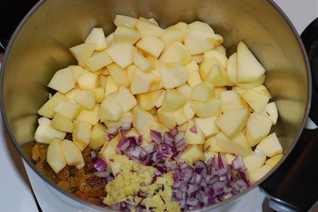 Apples, raisins, red onion and ginger in the cooking pot